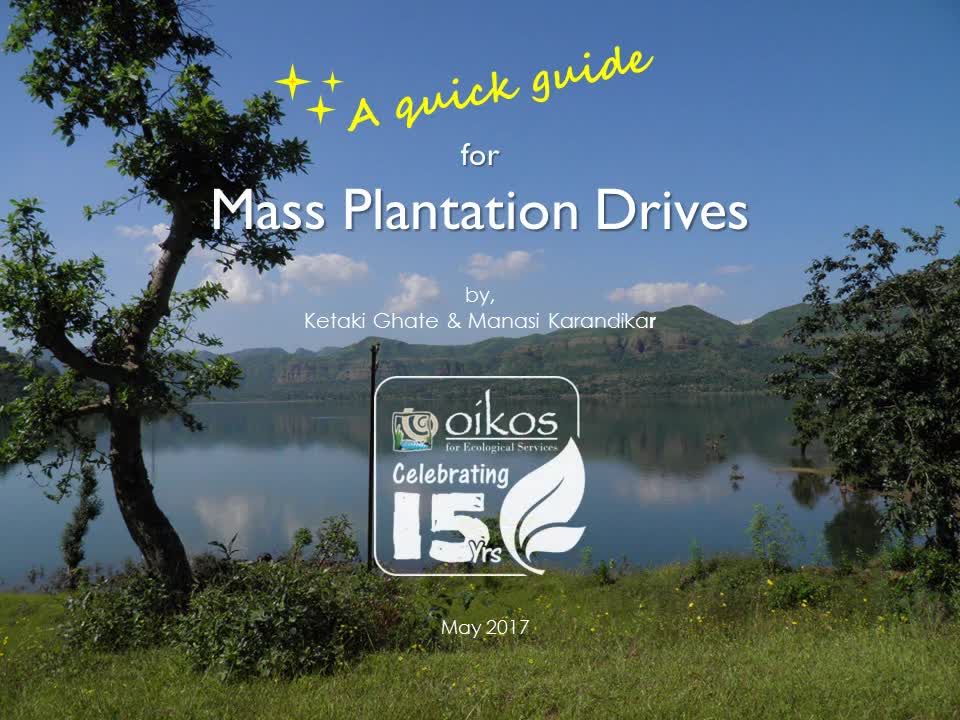 Plantation Guidelines